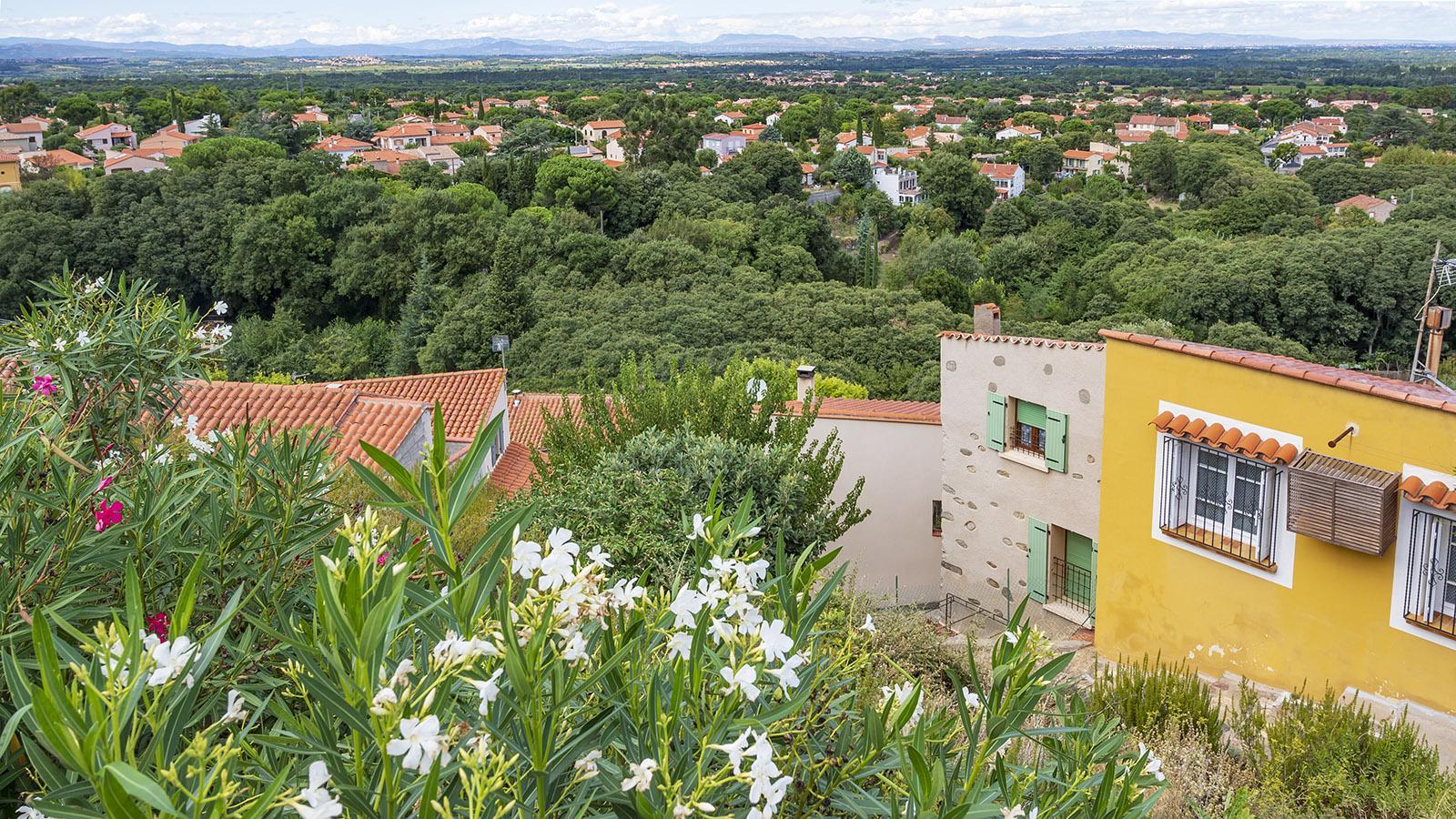 Der Blick über Laroque hin zur Ebene des Roussillon und die Corbières. Foto: Hilke Maunder