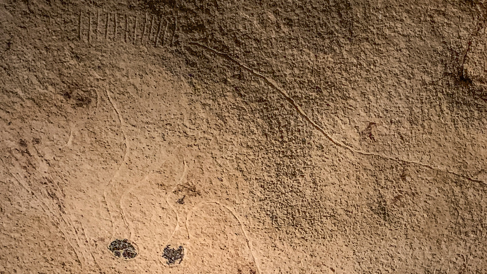 Ein Pferd mit aufrechter Mähne, geritzt in den Fels. Foto: Hilke Maunder