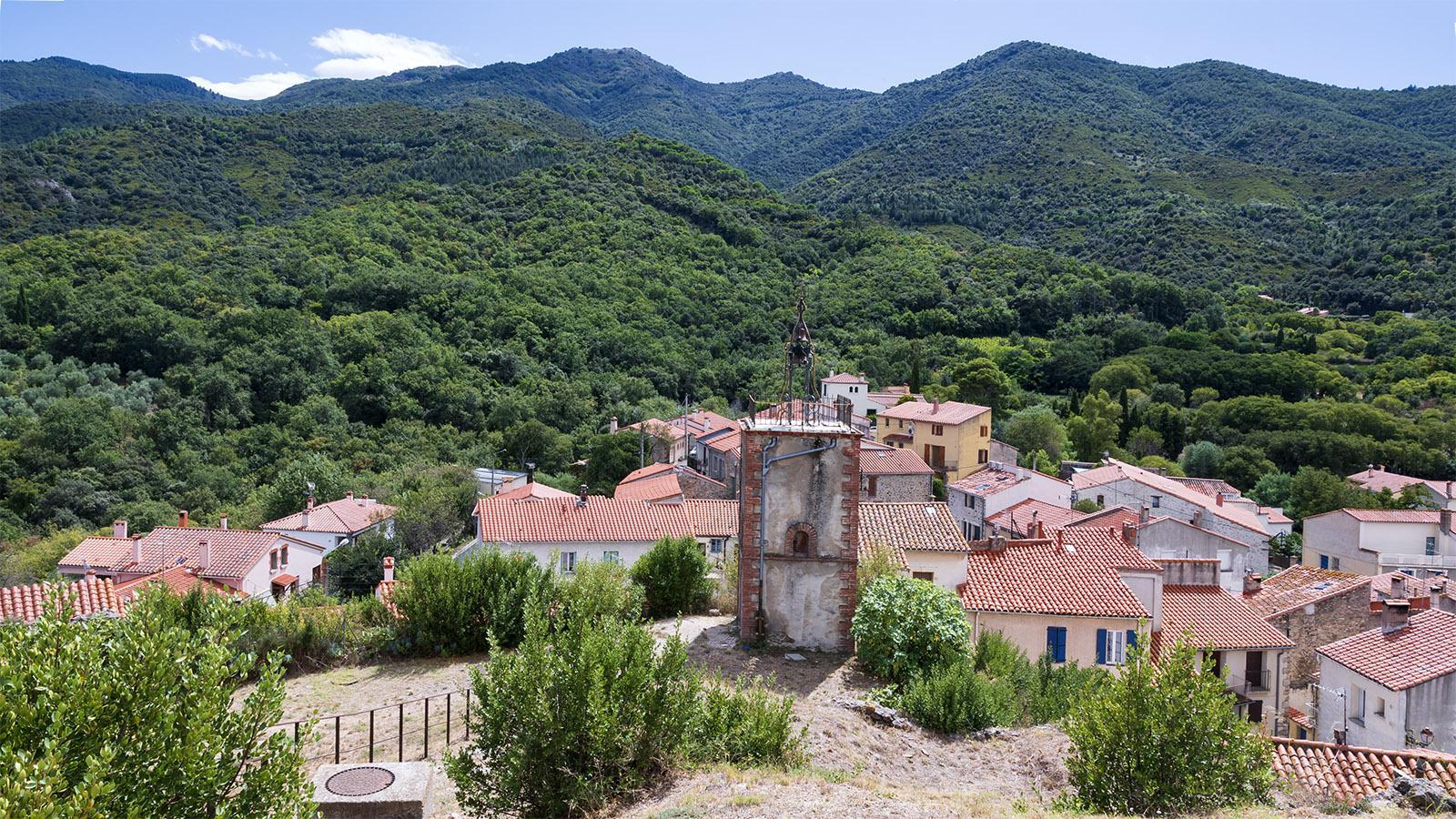 Montesquieu-des-Albères. Foto: Hilke Maunder