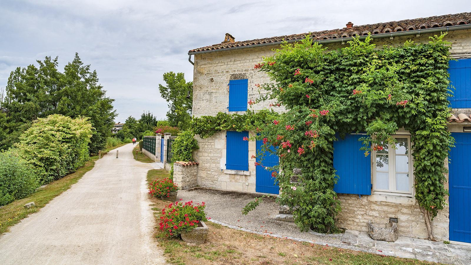Auf der Radroute <em>La Francinette</em>bei Magné. Foto: Hilke Maunder