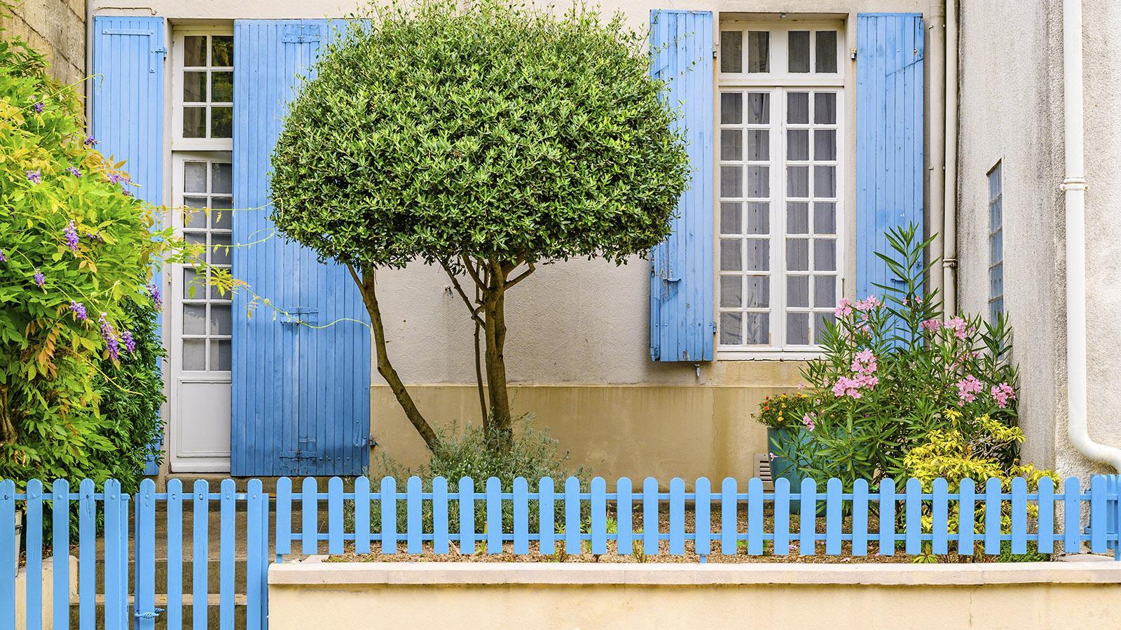Weißer Putz, blaue Fensterläden: der typische Look der Häuser im <em>Marais Poitevin</em>. Foto: Hilke Maunder