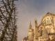 Die Kathedrale von Bourges grenzt direkt an den erzbischöflichen Garten mit seinen Baumspalieren in Reihe. Foto: Hilke Maunder
