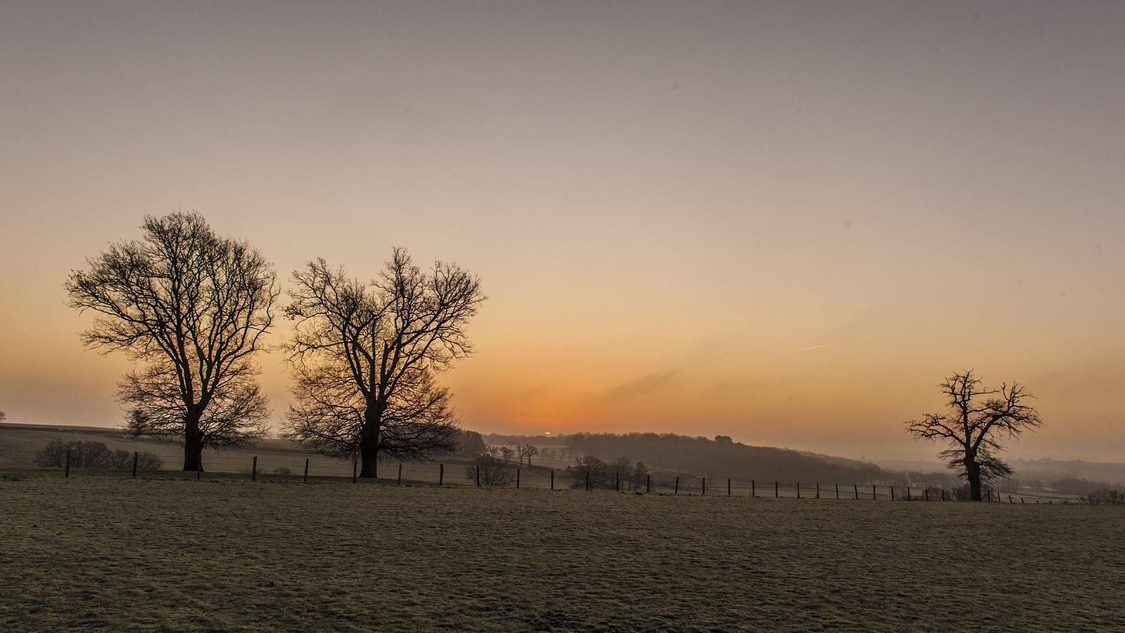 Morgenstimmung im Berry. Foto: Hilke Maunder