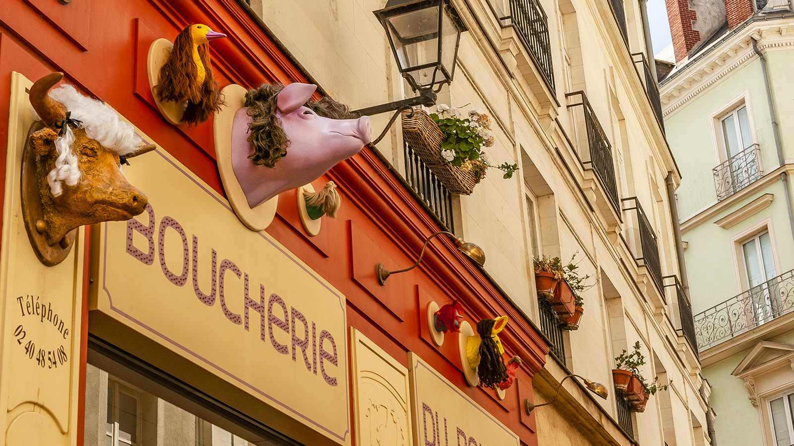 Nantes: Quartier Bouffay, Schlachter. Foto: Hilke Maunder