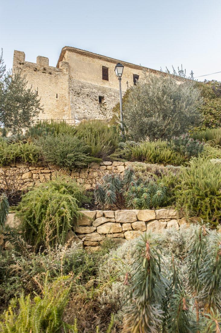 Typisch provenzalisch: der Trockengarten unterhalb der Burg von Gréoux. Foto: Hilke Maunder