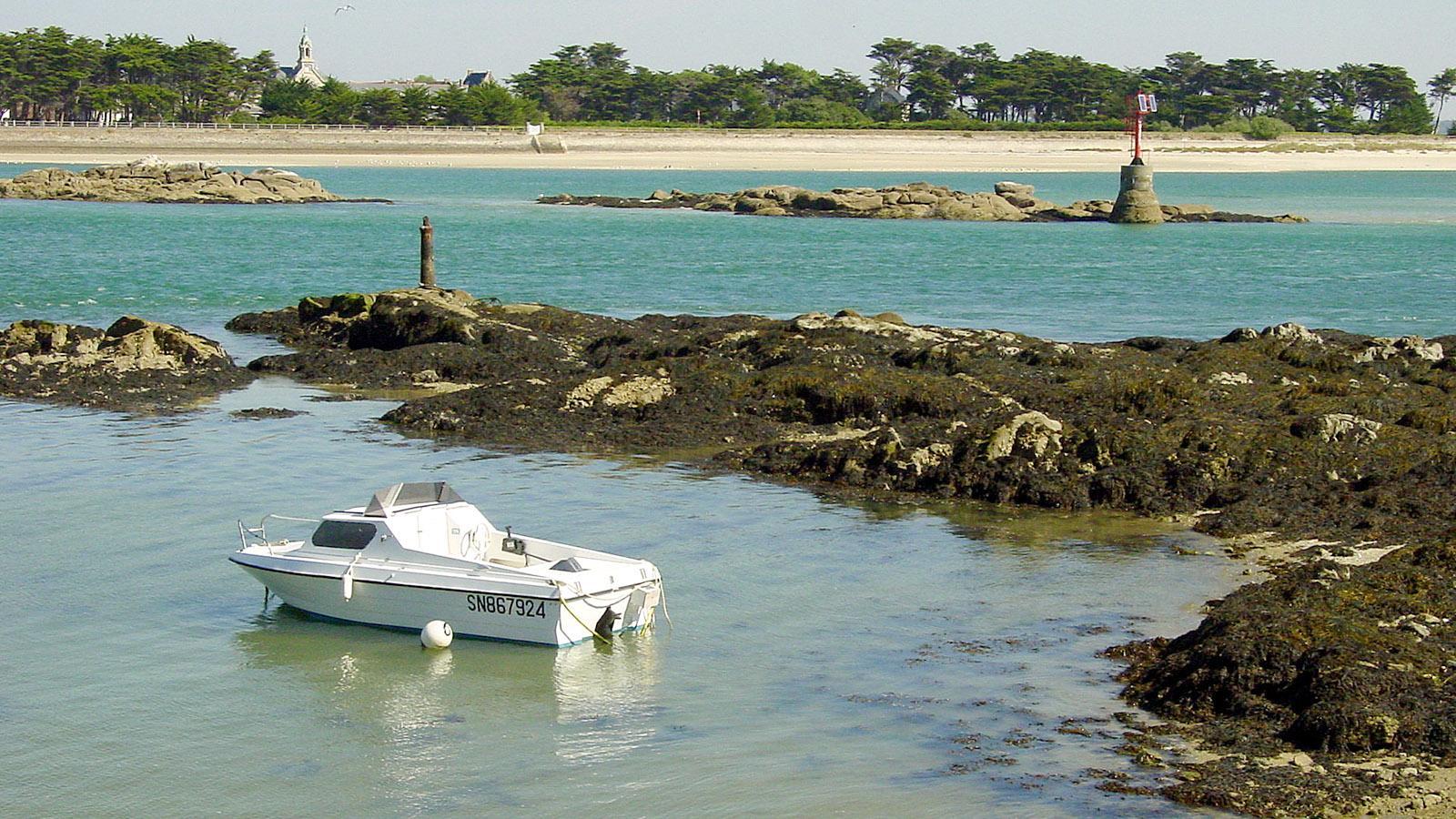 Le Croisic: Blick von der Uferpromenade auf die Algen der Küste. Foto: Hilke Maunder