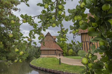 Château de Crèvecoeur_Äpfel_1©Hilke Maunder