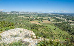 F_Baux-de-Provence_Olive Cassée_Haine_©Hilke Maunder