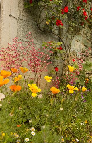 F_Bourg-Charente_Rue des Fleurs_14_credits_Hilke Maunder