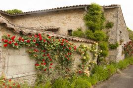 F_Bourg-Charente_Rue des Fleurs_5_credits_Hilke Maunder