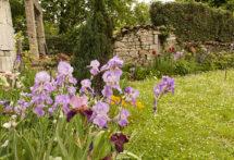 F_Bourg-Charente_Rue des Fleurs_9_credits_Hilke Maunder