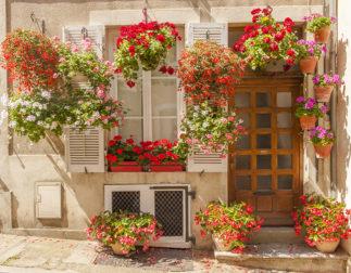 F_Bourgogne_Autun_Fensterläden_Geranien_1_credits_Hilke Maunder
