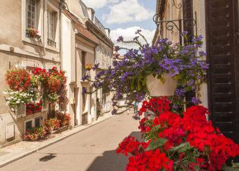 F_Bourgogne_Autun_Oberstadt_Geranien_credits_Hilke Maunder