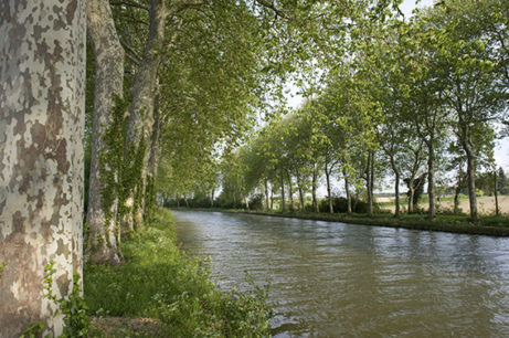 F_Canal du Midi_4_©Hilke Maunder
