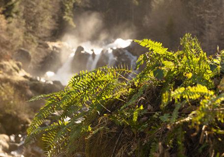 F_Cauterets_Pont d'Espagne_Wasserfall_credit_Hilke Maunder