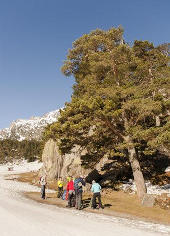 F_Cauterets_Pont d'Espagne_Winter_Schneeschuhwandern_1_credit_Hilke Maunder