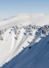 F_Châtel_Skigebiet_6_©Hilke Maunder