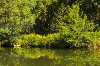 F_Charente_Hausboot_Natur_2_credits_Hilke Maunder