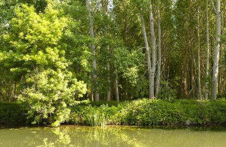 F_Charente_Hausboot_Natur_4_credits_Hilke Maunder