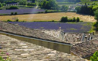F_Drôme_ Grignan_Lavendel_Dächer_credits_Hilke Maunder