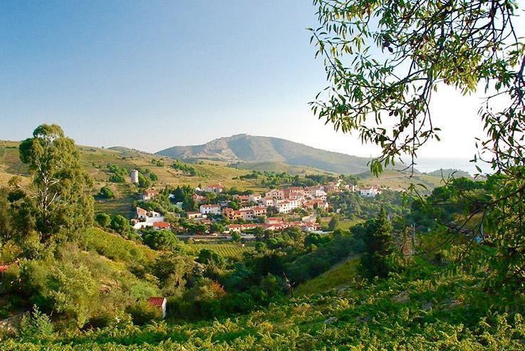 Bei Cospron im Roussillon