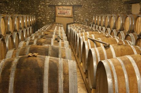 F_Gers_Château de Millet_Armagnac_Cave_Fässer_3_©Hilke Maunder
