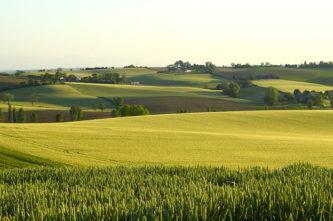 F_Haute-Garonne_typische Landschaft_Hilke Maunder