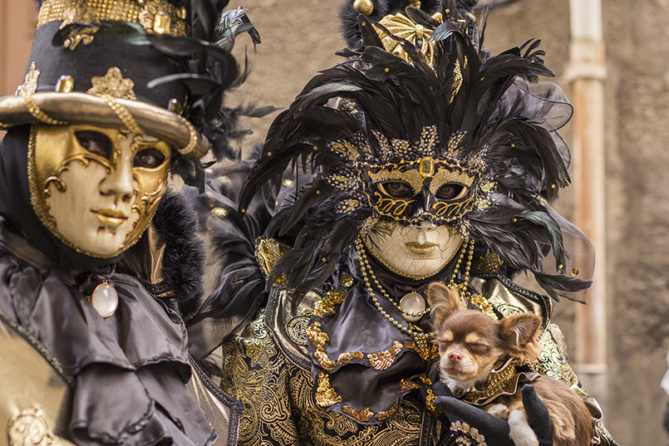 F_Karneval_Castres_8_credits_Pascale Walter-CDTTarn