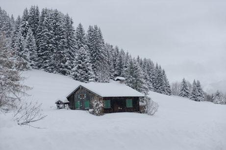 F_Les Gets_Mont Coty_1_©Hilke Maunder