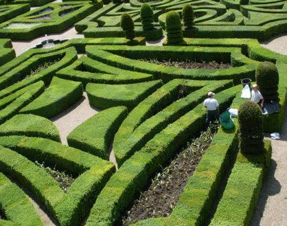 F_Loire_Villandry_Schloss_Garten_5©Hilke Maunder