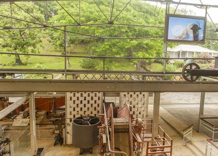 F_Martinique_Habitation Clement_Destillerie_6_credit_Hilke Maunder
