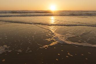 F_Medoc_Carcans_Strand_Sunset_6_credits_Hilke Maunder