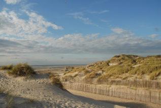 F/Pas-de-Calais/OpalkŸste/Berck-sur-Mer: DŸnen und Strand