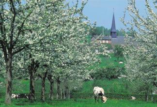 F_Normandie _Paysage credits_J.F.LEFEVRE
