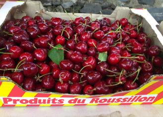 F_Prats de Sournia_Kirschen_Roussillon_2_credits_Hilke Maunder