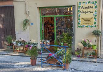 F_St-Paul-de-Fenouillet_flower-shop_credit_-Hilke-Maunder