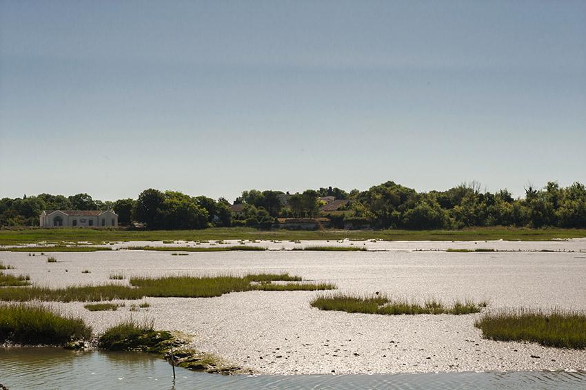 Die kleine Bucht von Talmont-sur-Gironde. Foto: Hilke Maunder