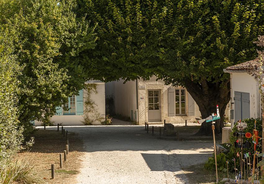 Naturstein, blaues Tor und Stockrosen: Talmont-sur-Gironde. Foto: Hilke Maunder
