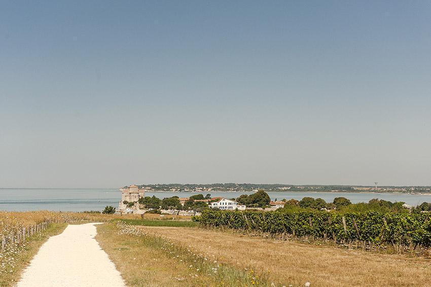Talmont-sur-Gironde. Foto: Hilke Maunder