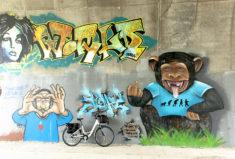 f_valence_street-art_pont-maubeule_4_hilke-maunder