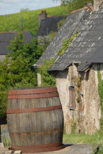 F/Pays de la Loire/Maine-et-Loire/St Aubin De Luigne: Haie Longue, Weinfass
