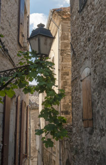 f_viviers_bourg_gasse_3hilke-maunder